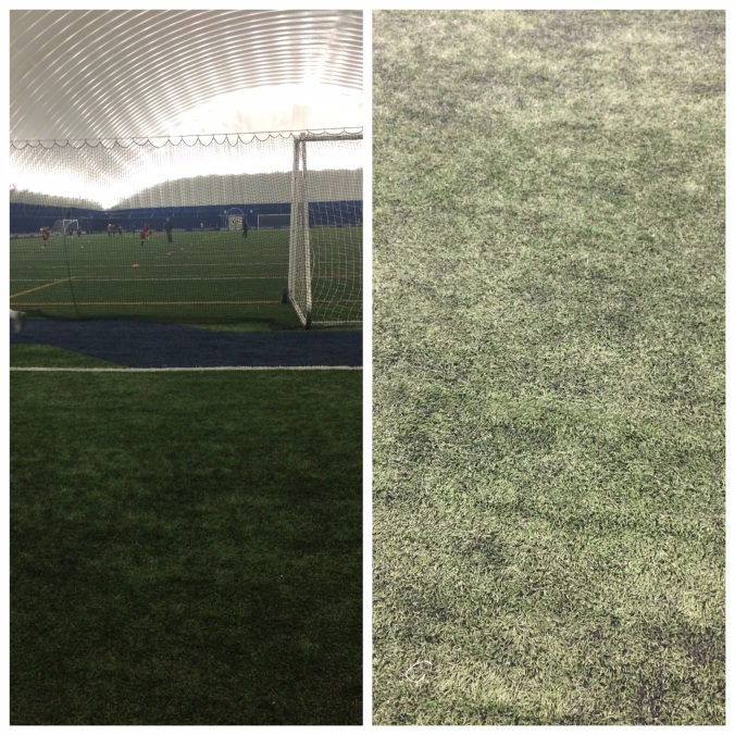 Turf-tastic? Not so much.